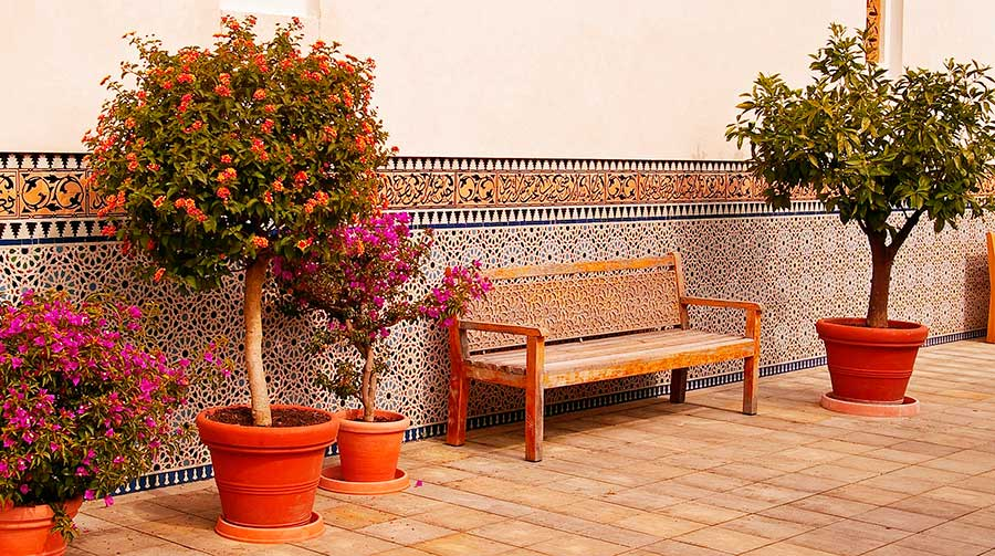 Limpieza de azulejos de terracota